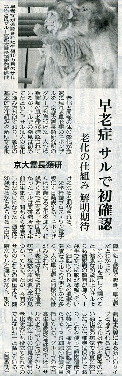 2014-11-04スタッフ注目記事
