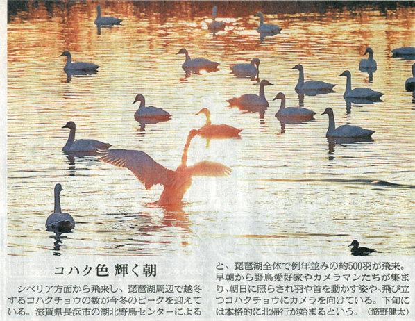 2015-02-09スタッフ注目記事