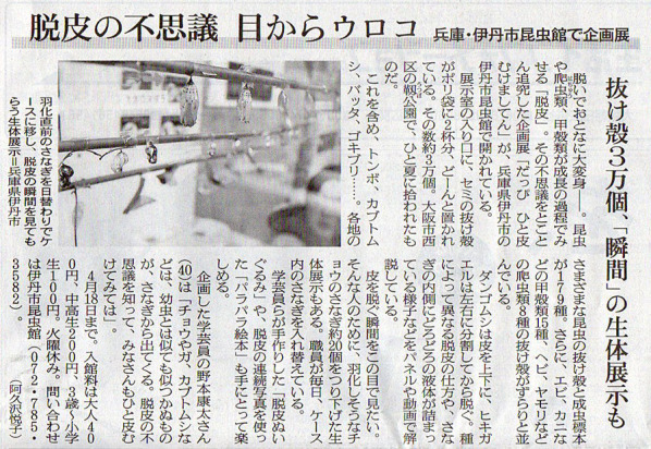 2016-02-22スタッフ注目記事.jpg