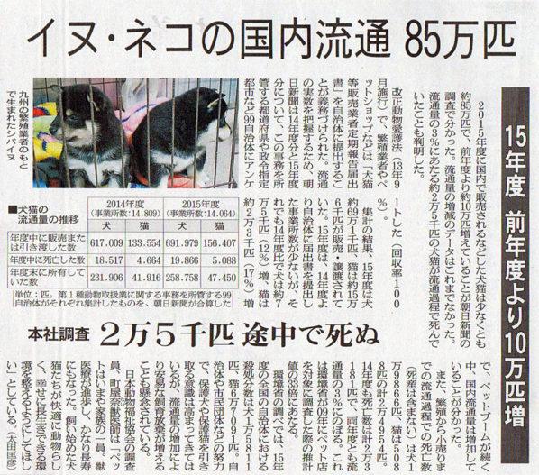 2017-01-27スタッフ注目記事.jpg
