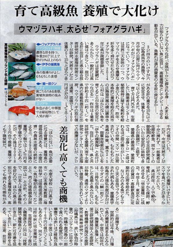 2017-11-05スタッフ注目記事.jpg